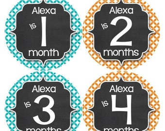 PERSONALIZED Baby Girl Month Stickers Monthly 12 Month Sticker Monthly Baby Stickers Baby Shower Gift Photo Prop Milestone Sticker 492
