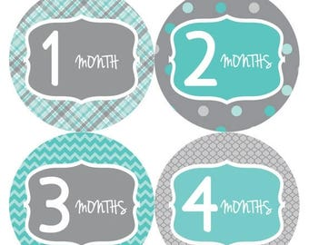 Baby Month Stickers, Baby Boy Gift, Milestone Stickers, Monthly Sticker, Monthly Baby Boy Stickers, Baby Bodysuit, Baby Shower Gifts  132