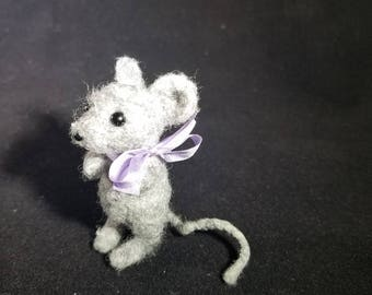 Little grey mouse