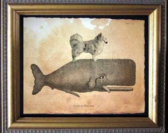 Australian Shepherd Dog Riding Whale - Vintage Collage Art Print on Tea Stained Paper dog art - dog gifts - dog christmas gift