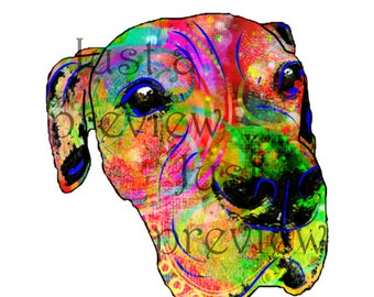 Photo print - Funky Colorful Dog 8x10