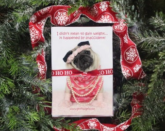 GIFT Pack 7 - The Teddy - 5 Magnet Gift Pack - Gifts for Pug Lovers - by Pugs and Kisses