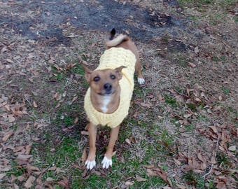 Crochet dog sweater. Made to order