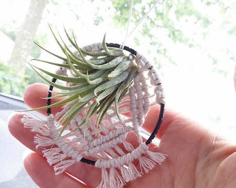 Air plant holder Hanging mini macrame with airplant Wall hanging Window hanging Car hanging Small gardener gift