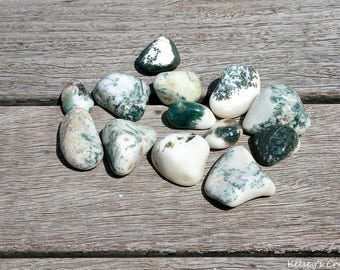 Tumbled Tree Agate | Healing Stone | Healing Crystal | Spiritual Stone | Tumbled Stone | Gemstone |