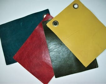 bright color leather 6x8 4pk