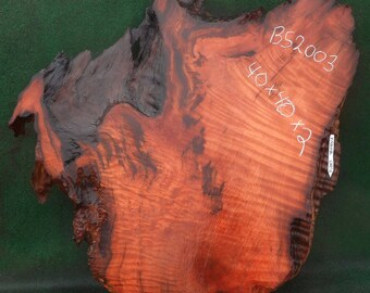 redwood burl slab with live edge - bs2003