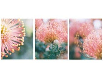 Flower Prints - Wall Art Set, Flower Boho, Set of 3 Prints, Big Wall Art, Oversize Wall Art, Boho Prints, Flower Photography