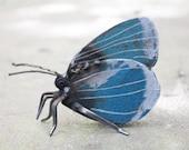 Holly Blue Butterfly Sculpture - Scrap Metal Sculpture, Unique Art Work,  Metal Art, Metal Butterfly