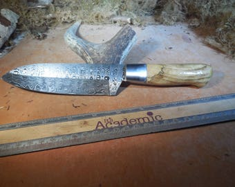 Damascus Santoku Chef and Camping Knife Spalted Haclberry wood handle.