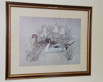 Duck Print J.S. Parks Collectible Vintage, Home Decor, Man Cave, Cabin Art Windsor Art Products