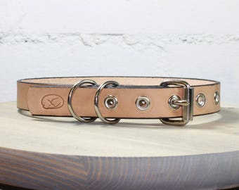 Deluxe Natural Leather Dog Collar