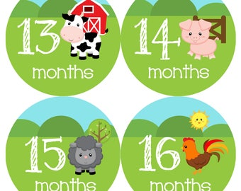 Farm Animals Monthly Onesie Stickers Year 2 - Second Year 13 to 24 months