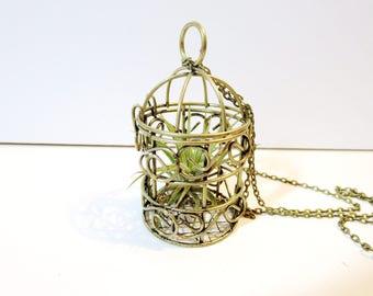 Live plants necklace -Air Plant Necklace -Live Plant Necklace -Miniature Terrarium Live plant Necklace - leather planter necklace