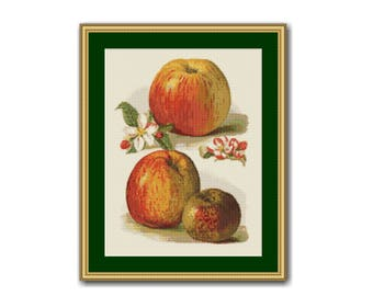 Apples & Apple Blossoms Counted Cross Stitch Pattern / Chart, Instant Digital Download, Kitchen Decor  (AP301)