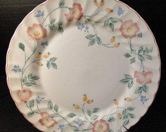 "Churchill Briar Rose Dinner Plate 10"" EXCELLENT!"