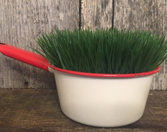 Enamel Pan With Artificial Grass