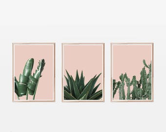 Set of 3 Prints,Tropical Prints,Banana Leaf Print,Succulent Print,Cactus Print,Blush Pink,Tropical Wall Art,Set of 3 Wall Art,Set of Prints