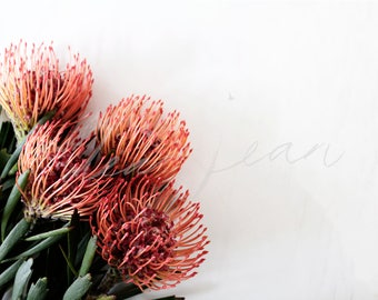 Flower Bouquet Stock Photo | Coral, Green, Natives, Unique, Modern, Minimalist, Social Media Images, Stock Photography, Floral, Flowers
