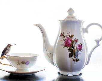 Tea Time Visitor Print, Hummingbird