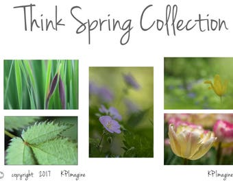 Set of five Spring-inspired  floral photo note cards, blank for any occasion.