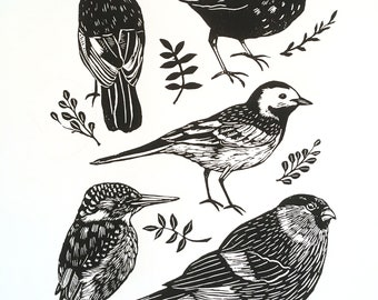 British Birds Screen Print