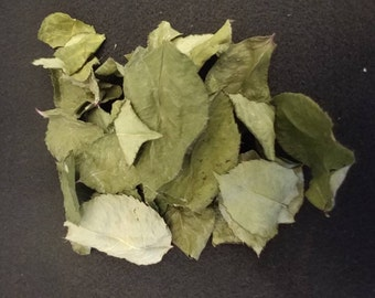 Dried Rose Leaf