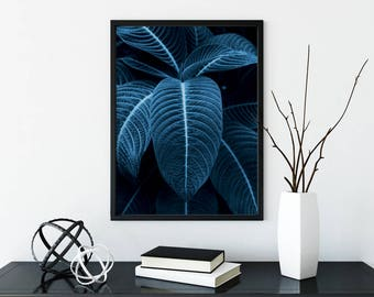 Monstera Leaf Print, Tropical Wall Art, Palm Leaf, Botanical Print, Tropical Art, Tropical Decor, Tropical Print, Tropical Leaf Print