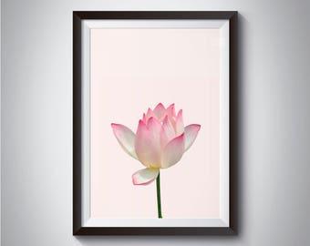 Lotus print - Pink Lotus print - Botanical lotus - Scandinavian print - Nordic design - Scandinavian Wall Art Prints