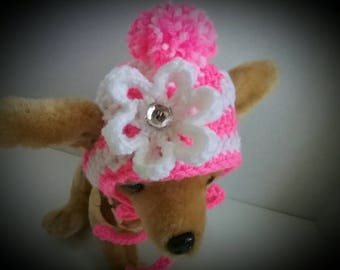 Chihuahua hat, Dog hat, Yorkie hat, Small dog hat,