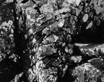 Auchencairn rock