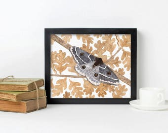 Grey Silk Moth on Oak, watercolour painting, art print, woodland print, wall art, home decor