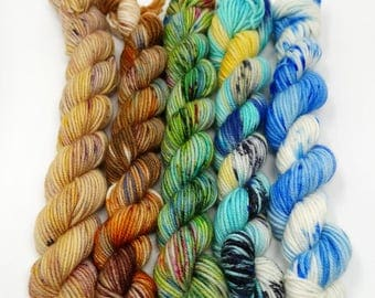 Winter to Spring - 5 x 20g - DK / Double Knit - Superwash Merino  - Hand Dyed Yarn