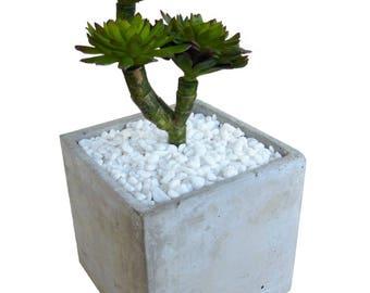 Artificial Succulent Plant in Concrete Pot