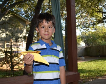 The Bird Plane - digital download of instructions for a paper airplane that looks like a bird!