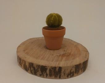 Felted Cactus