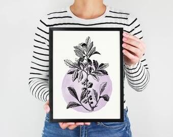 Botanical Watercolor Print