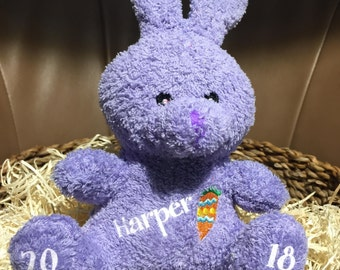 Personalized Plush Bunny - comes in 4 colors