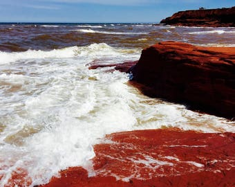Bleeding Shores