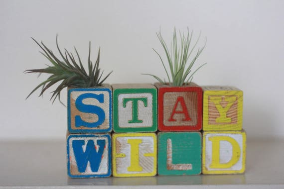 Stay Wild Woodland Vintage Wood Block Air Plant Holder Nursery Decor Baby Room Decoration