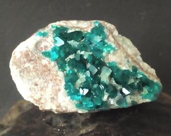 DIOPTASE on Matrix Crystal Specimen - Bright and Beautiful !
