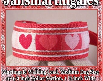 Jansmartingales, Collar and Leash Combination Walking Lead, Whippet, Medium Dog Size, wred106