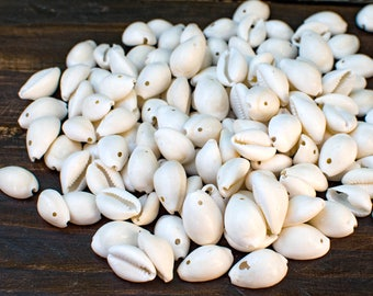 White  Shells, 40pcs,  Full Cowry Shell,  One Hole, Natural Shell -BN117