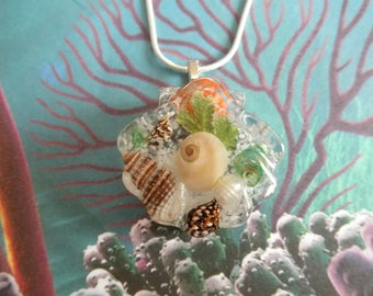 Under The Sea-Seashells,Beach Sand, Real Pearl, Frosted Ferns Pressed Flower Seashell Shaped Resin Pendant-Nature's Art