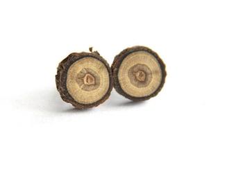 walnut - One Pair of little stud earrings
