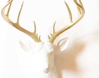 WHITE GoLD XL Faux Taxidermy Deer Head wall mount Stag Head wall hanging Farm House decor  Doug the XL Deer head in white with gold antlers