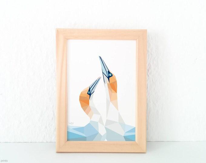 Gannett pair print, Gannett wall art, Native New Zealand birds, Sea birds, Bird pair, Geometric bird,  Australasian gannett, Cape Kidnappers