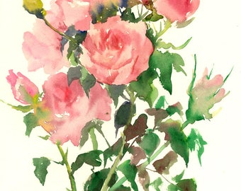 Floral Artwork Soft Pink Garden Roses, Original watercolor painting, 14 X 11 in, pink roses wall art