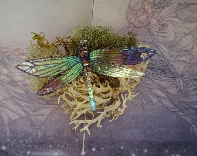 Featured listing image: Shimmering Dragonfly Brooch ~ Iridescent
