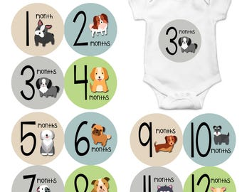 Monthly Baby Sticker Baby Boy | Baby Girl | Baby Month Stickers | Baby Milestone Sticker | 12 Month Stickers | Photo Prop | Puppy Dog 1173